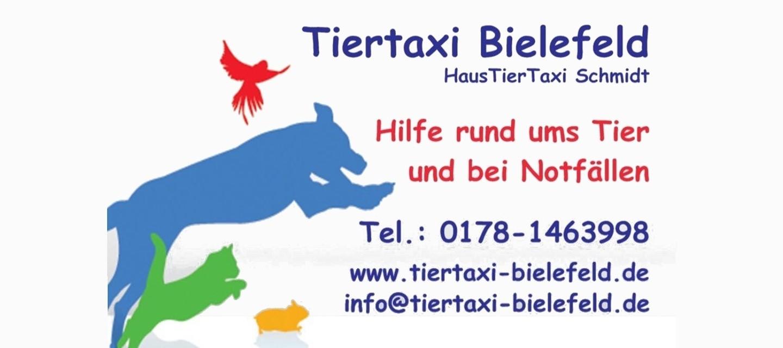 Tiertaxi Bielefeld   Bielefeld App